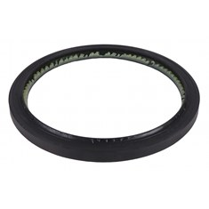 Rear Crankshaft Seal, Lip Style